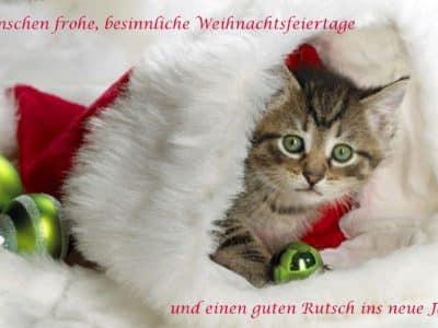 Frohes, besinnliches Weihnachsfest